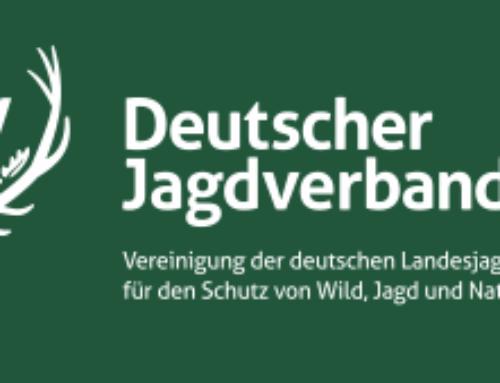 ASP in Polen Update 20.6.2020